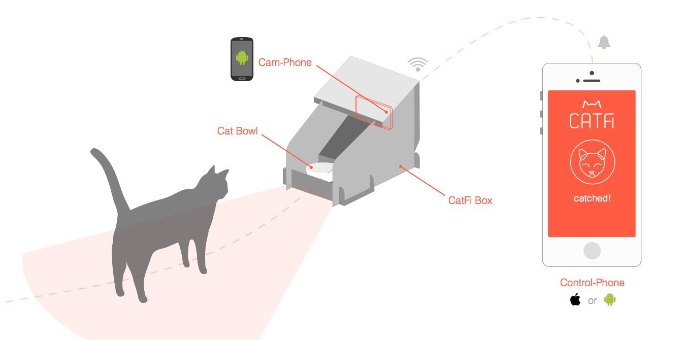 CatFi Box app