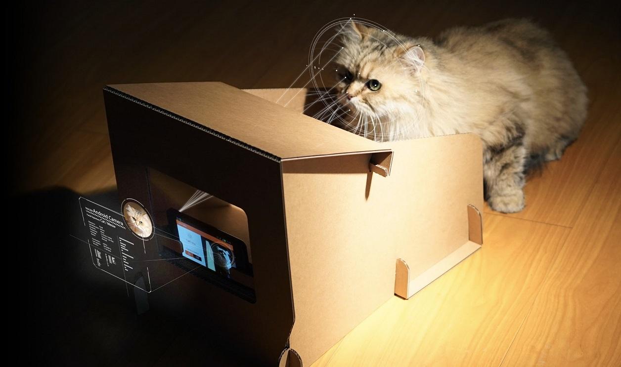 Kartonowa wersja - CatFi Box.