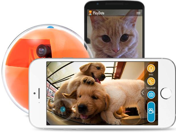 PlayDate app
