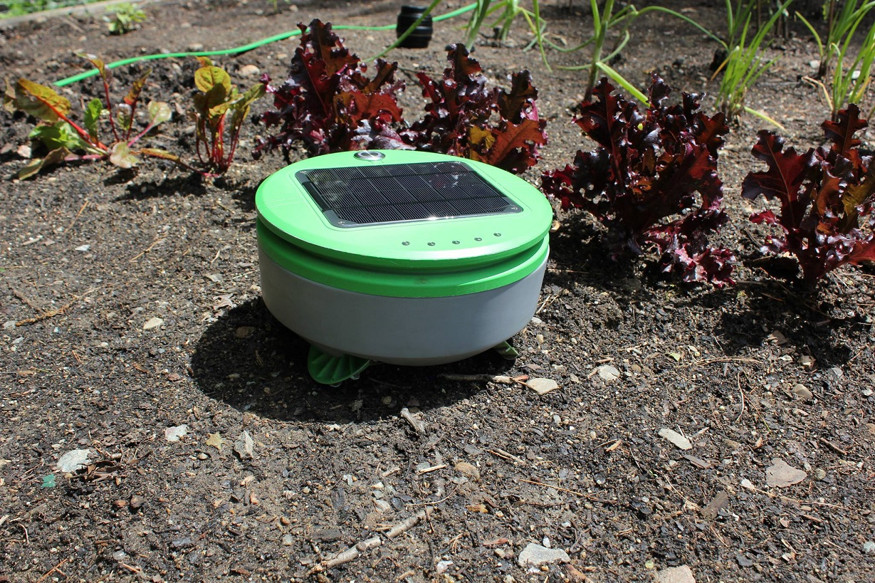 Robot Ogrodowy Tertill Automatyczny Smart Ogrodnik Do Pielenia