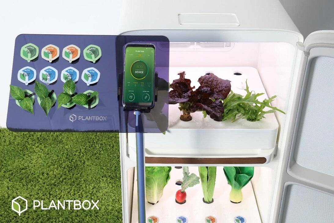 C-Lab Plantbox