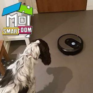 Roomba i7 zwierzęta