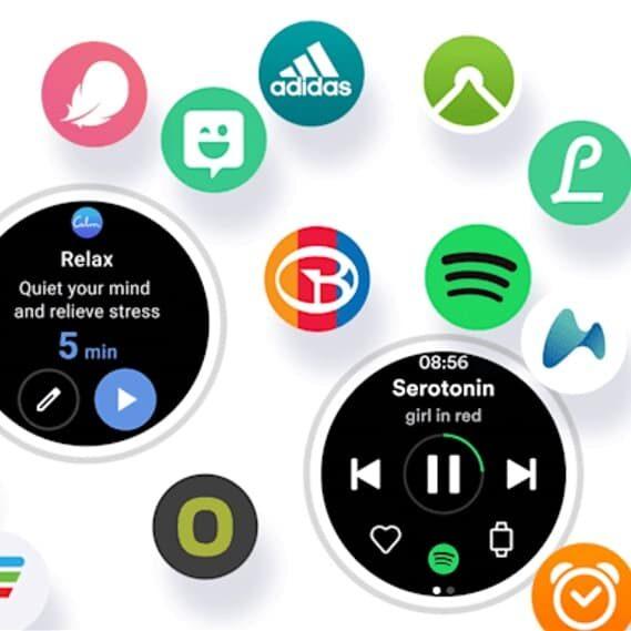 Wear OS One UI Watch